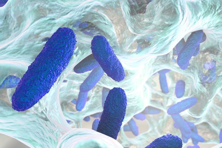 Biofilm and Biocidin