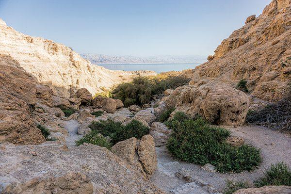 A SIVATAG & A HOLT TENGER // THE DESERT & THE DEAD SEA