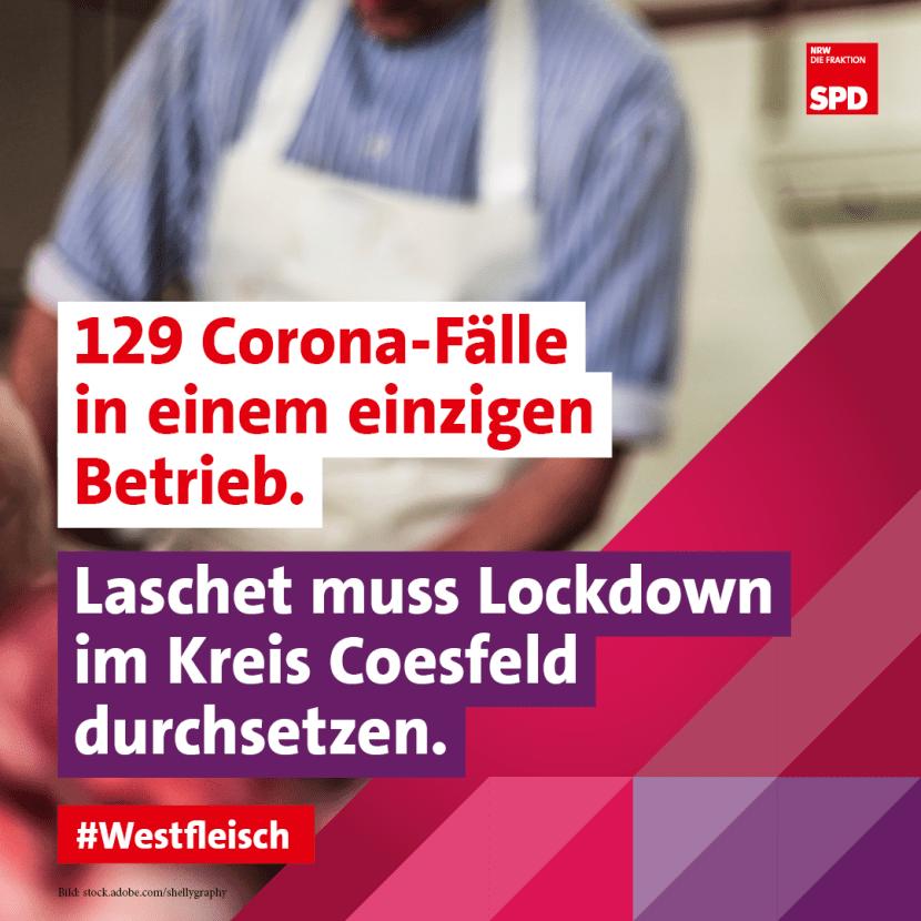 Westfleisch Coesfeld Skandal Fleischindustrie SPD Landtagsfraktion NRW