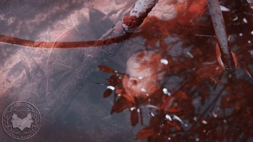 Anja Marais Video - THE FRUIT FORAGER - PIXELATION ANIMATION