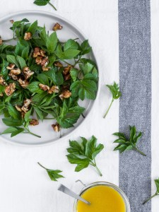 Skvalderkålssalat | Salat med skvalderkål og honningristede valnødder