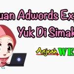 Video Tutorial Adwords Express Berbahasa Indonesia Gratis