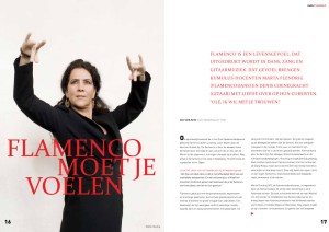 FlamencoMoetJeVoelen