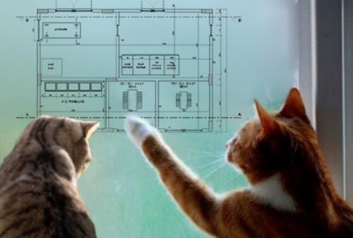 """Muhalefet, """"Trafoya kedi girmesin"""" diye atakta"""