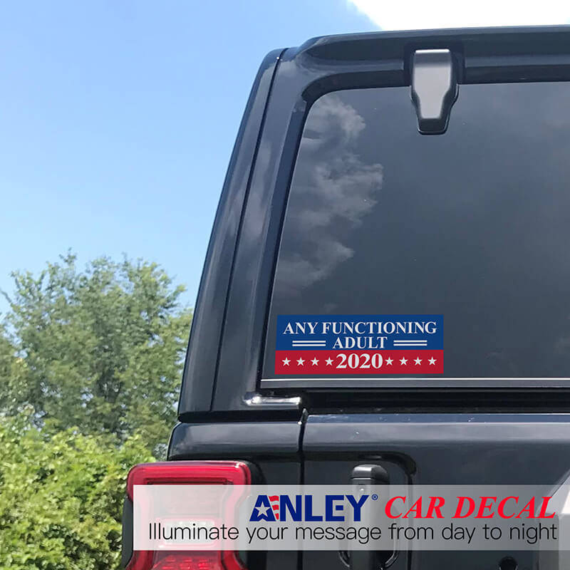 Any functioning adult 2020 decal