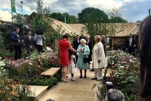 ann-marie-powell-gardens-royal-horticultural-society-chelsea-flower-show-gardens-2016-greening-grey-britain-health-horticulture-happiness-Her-Majesty-The-Queen-Elizabeth