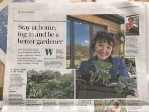 My real garden, the personal gardening tips and advice Instagram account from garden designer Ann Marie Powell features in The Telegraph. She designs gardens and landscapes in Hampshire Surrey West Sussex London Berkshire Wiltshire Petersfield