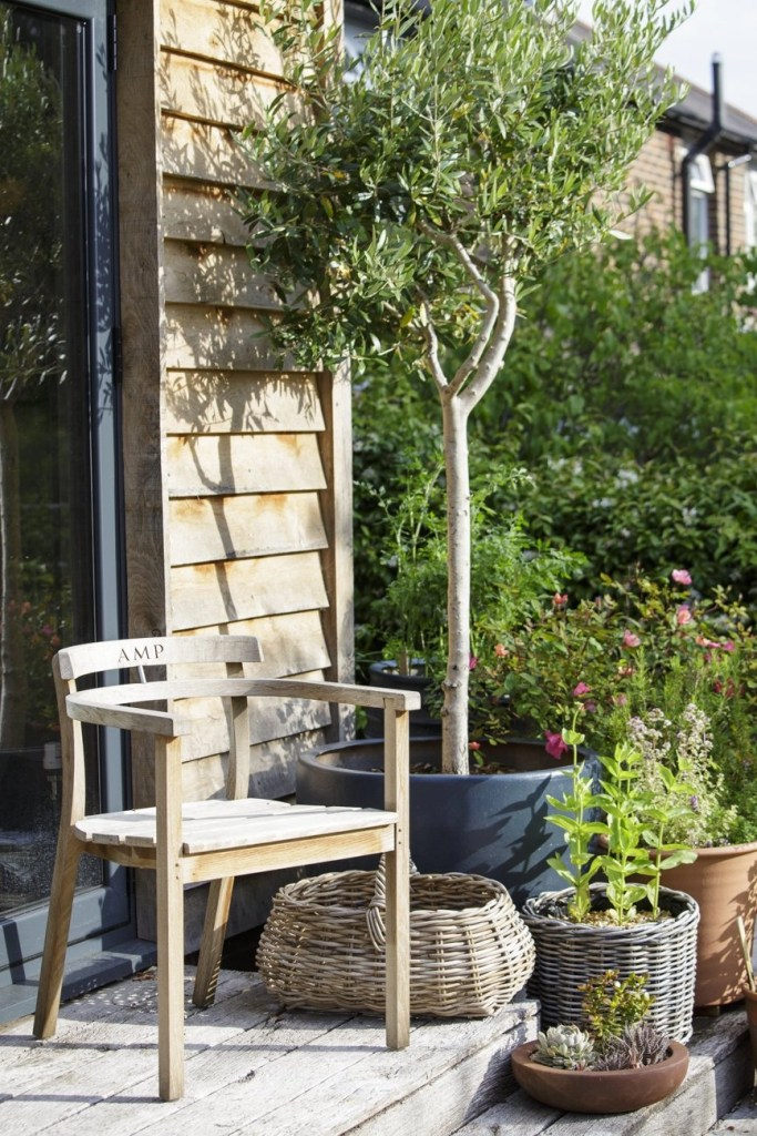 Designer Ann-Marie Powell's garden, Petersfield, Hampshire