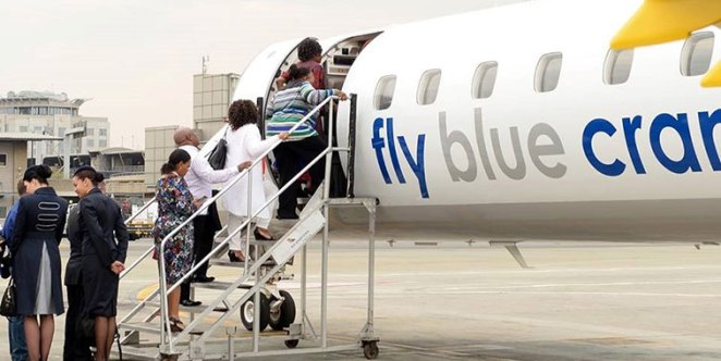 """Search result for """"fly blue crane"""""""
