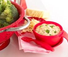 Salmon, Broccoli & Cheese Sauce
