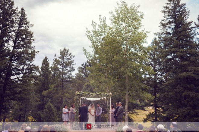 The Wedding Ceremony at Meadows at Marshdale
