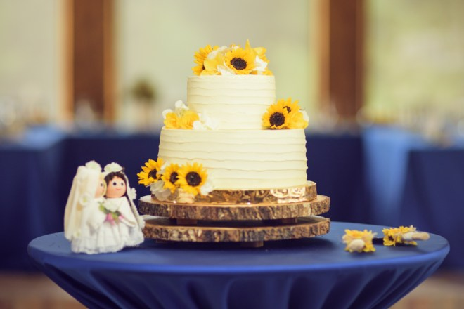 The wedding cake and little dolls of the brides