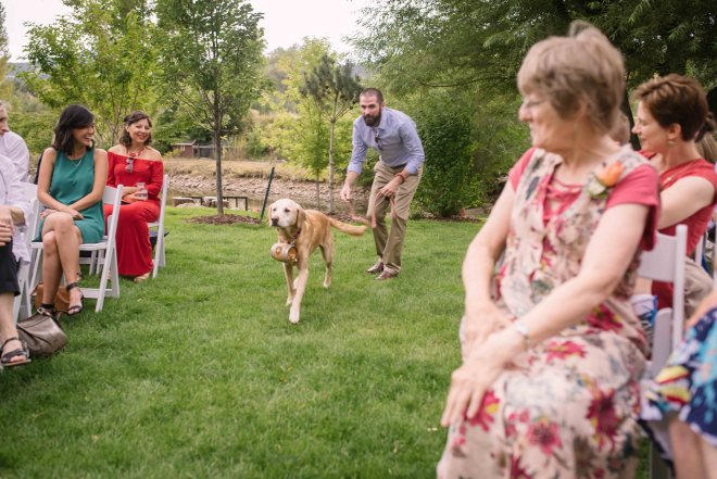 Summit the dog as ring bearer