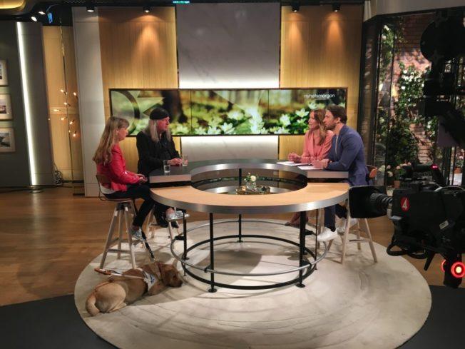 Bild när jag och Ulf gästar Tv4 Nyhetsmorgon.