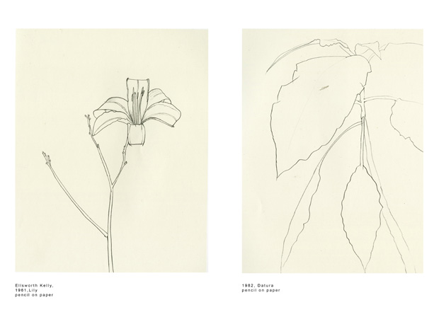 Examples of drawings by Ellsworth Kelly.