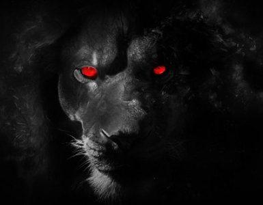assecondarci è uno dei mezzi di satana per allontanarci da Dio