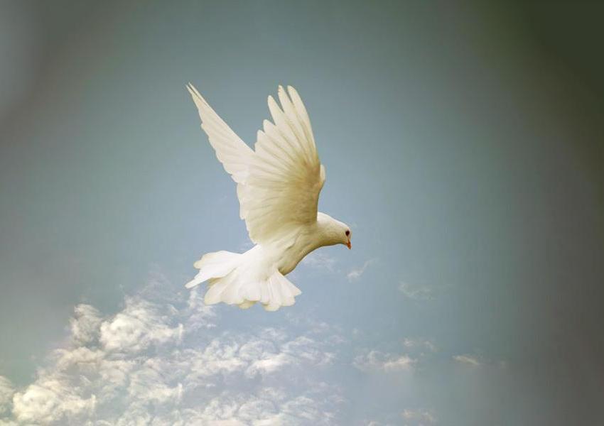 Lo Spirito Santo è il grande dono che Gesù ci ha fatto