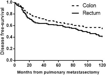 The Prognosis of Pulmonary Metastasectomy Depends on the