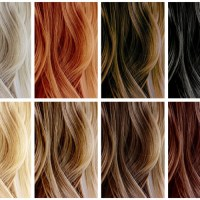 Artego Hair Color Italian Hair COlor Of Italian Hair Color ...