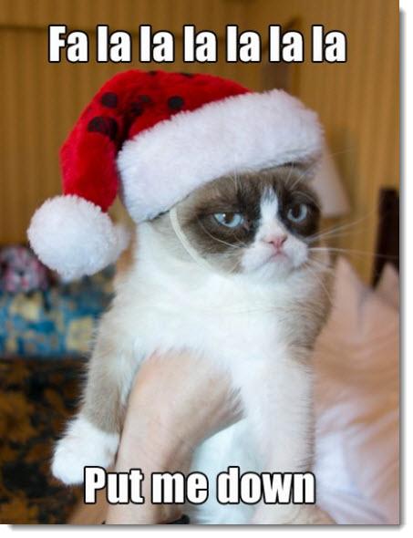 christmas-cat-put-me-down-holiday-humor