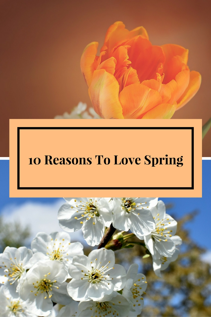 10 Reasons To Love spring