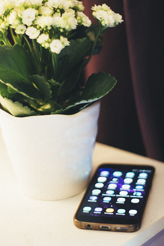 5 phone apps I can't live without