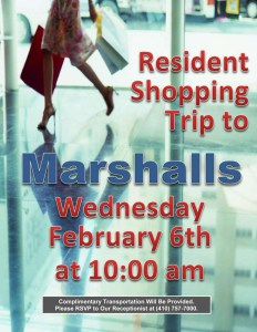 marshalls shopping trip flyer