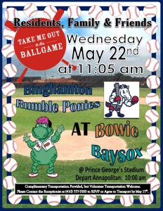 baseball outing flyer