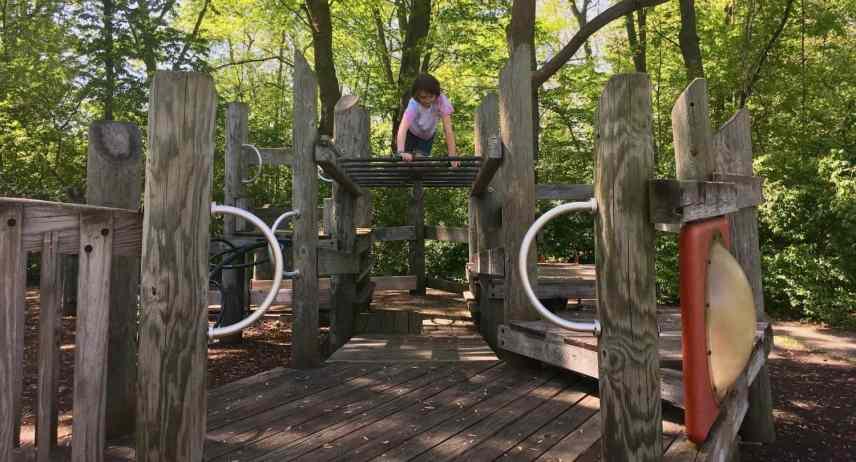 Fuller Park Playground Profile - Over the Monkey Bars
