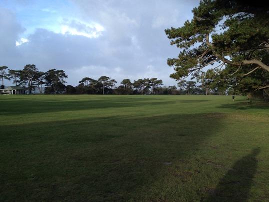 Netley Abbey Parkrun cricket pitch course
