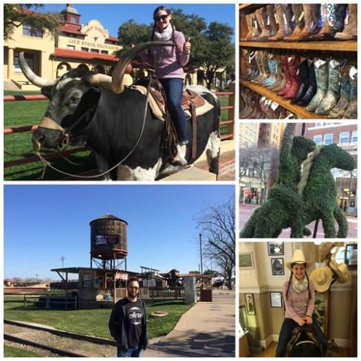 Fort Worth 2015