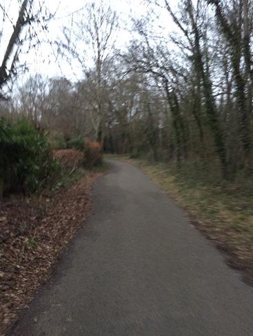 Hilly run Basingstoke