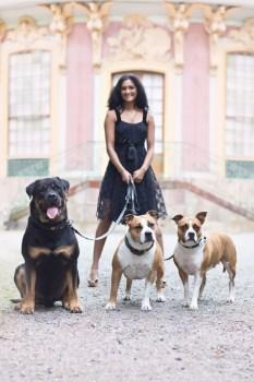 Dogs-pet portrait -Ann Charlotte Photography@2016-7
