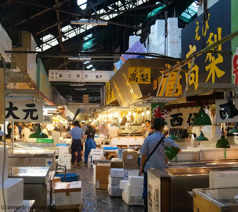 Tsukiji fish market tokyo a travel guide for Wholesale fish market near me