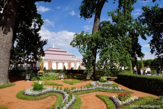 The Monplaisir Palace in Peterhof surrounded by stunning gardens and trees