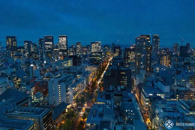 osaka at night from above st regis