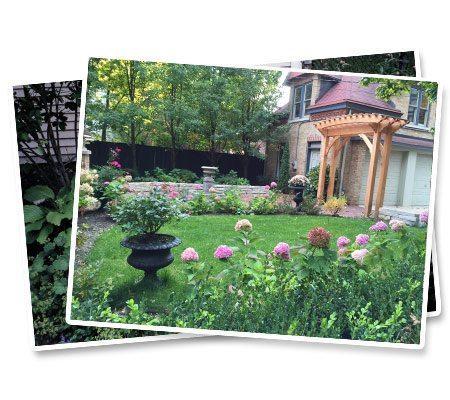 Anne Roberts Gardens landscapepic3a