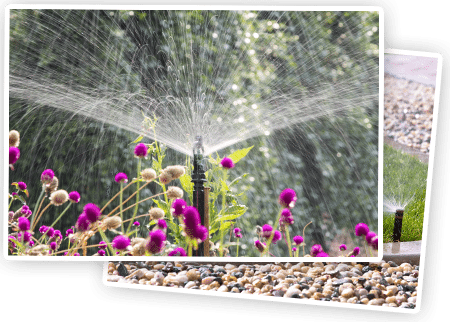 Anne Roberts Gardens sprinkler