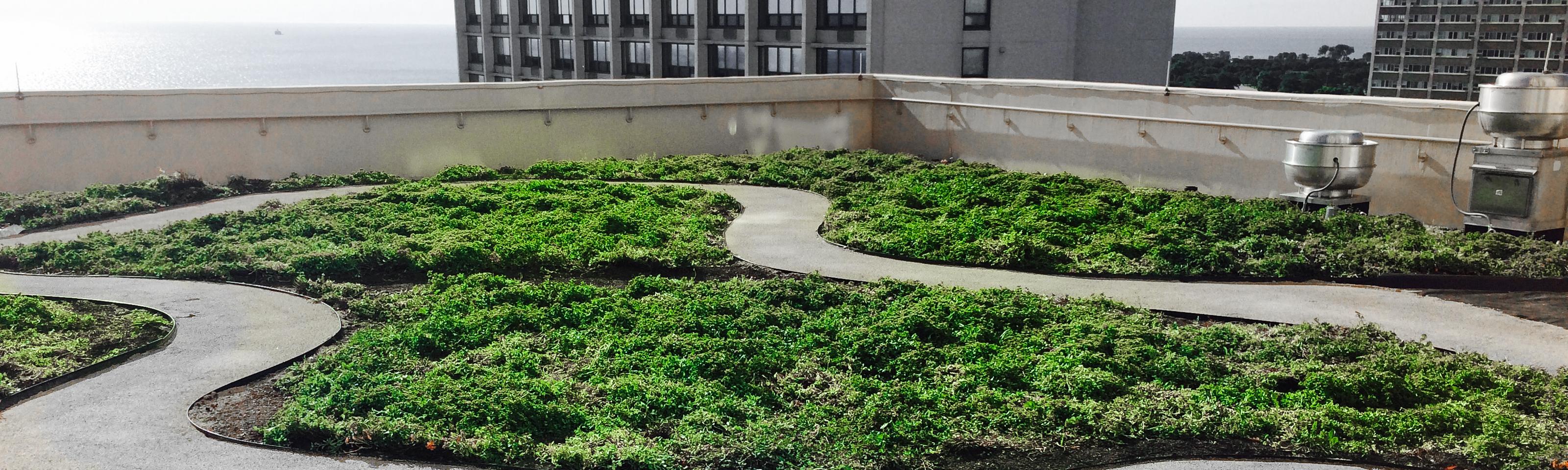 Anne Roberts Gardens chicago-landscape-design-9