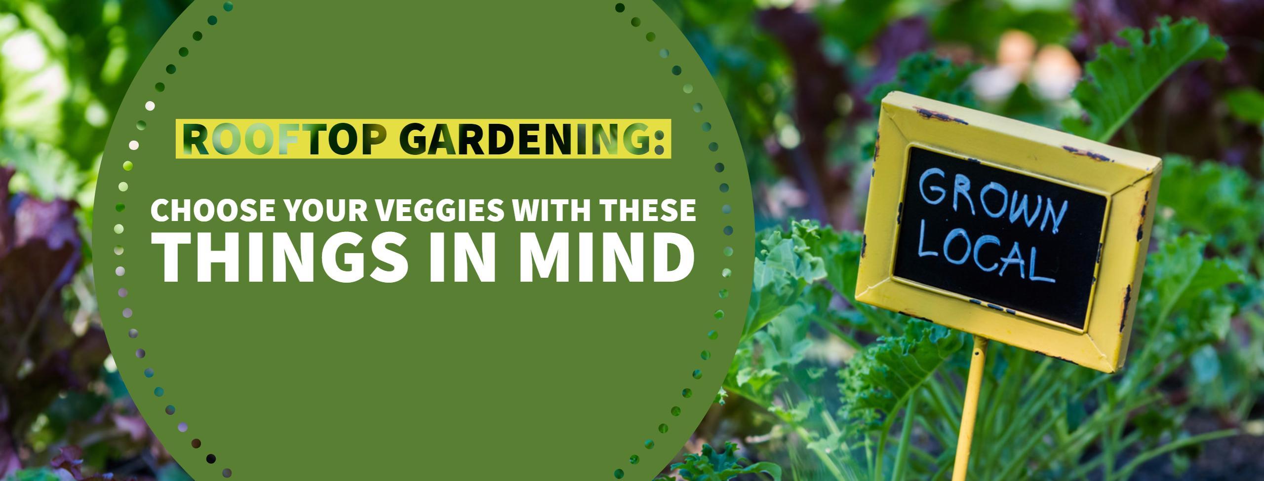 Anne Roberts Gardens rooftop-gardens-1