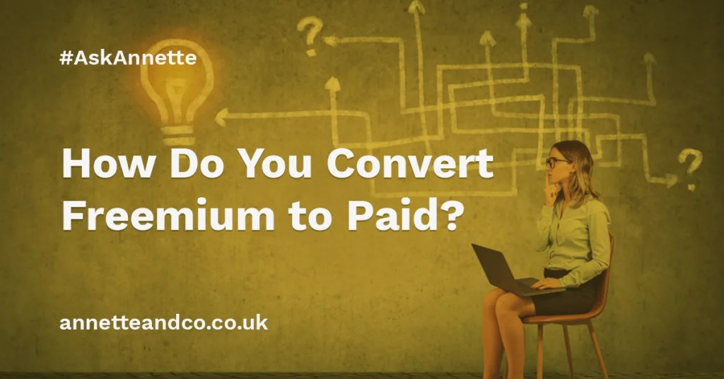 a featured image of a blog post that highlights the topic How Do You Convert Freemium to Paid