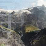 alpenweitje-30x24cm-w