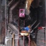 Reisverhalen (China #5), 2012