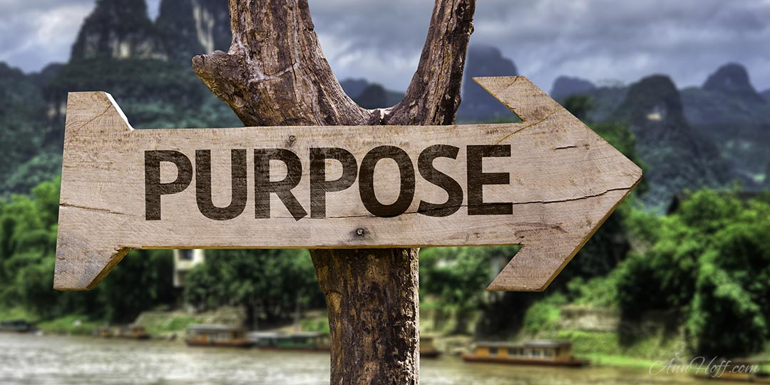 Purpose – an excerpt from Flourish by Ann Marie Hoff