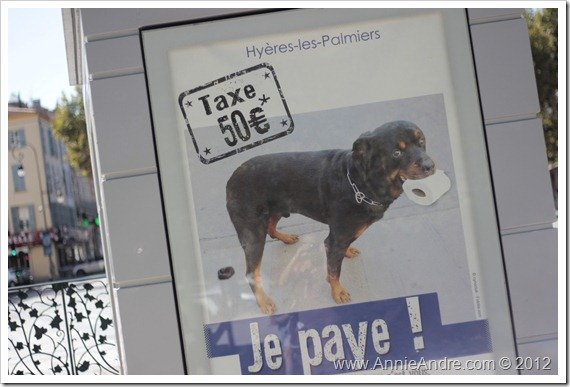 Culture shock: signage in Hyeres France stating that you will be fined if you do not pick up your dog poop