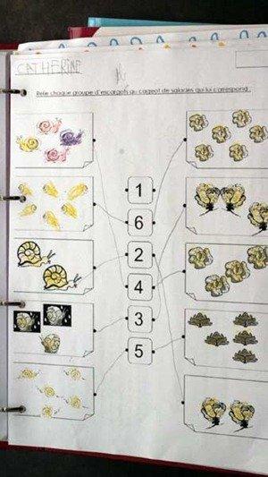 counting snails in french preschool. fun fun fun