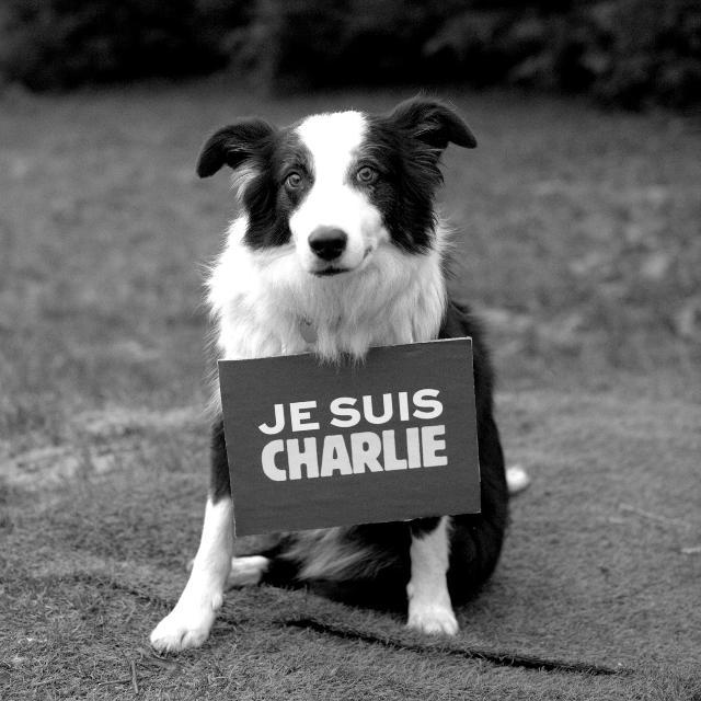 jesuischarlie-dog