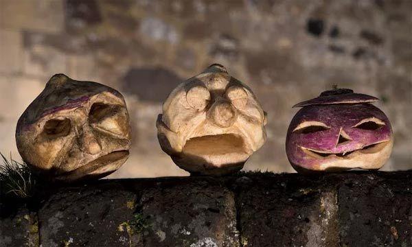 English-heritage-turnips