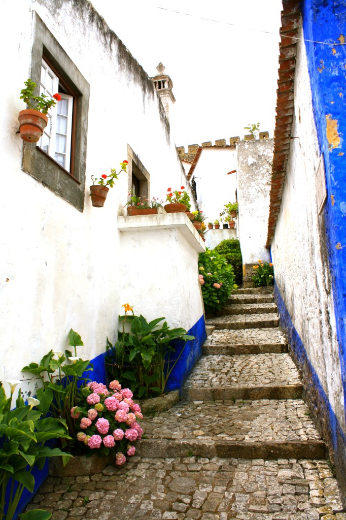 A beautiful back alley with flowers and strairs