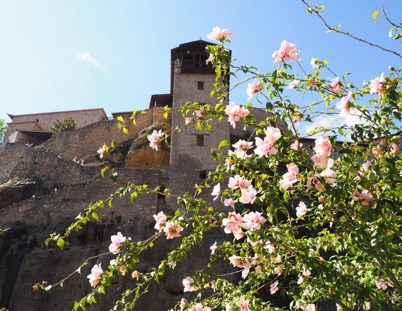 Flowers near Meteora Monastery in Greece